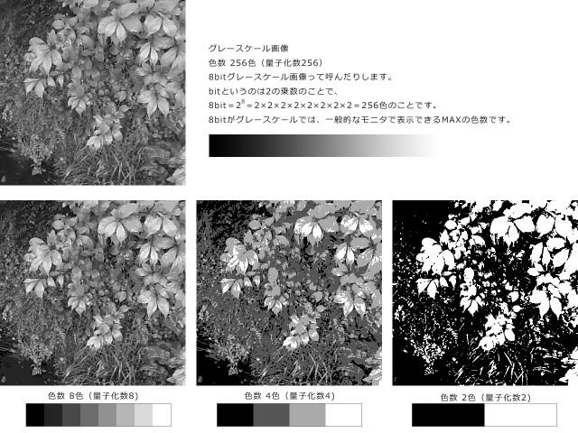 画像の量子化比較